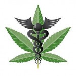 New Study: Scientists Say a Marijuana Diet Pill Possible?