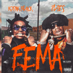 Kodak Black and Plies Drop 'F.E.M.A' Mixtape